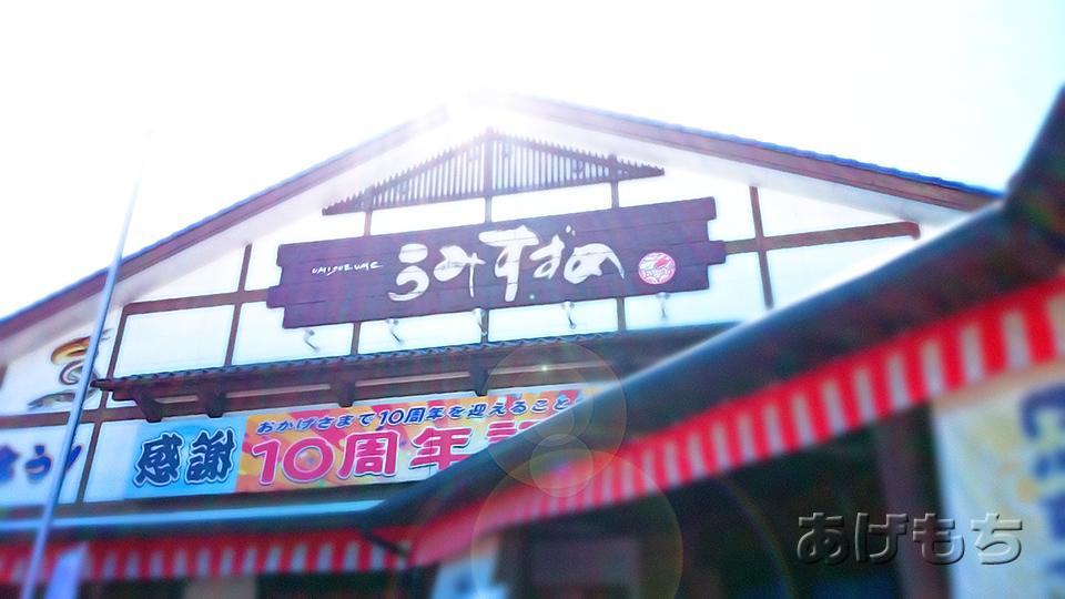 umisuzume2_shop.jpg