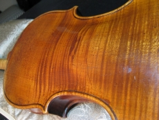 old violin back1