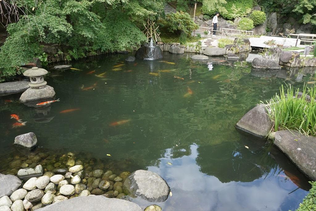 2つの池_3