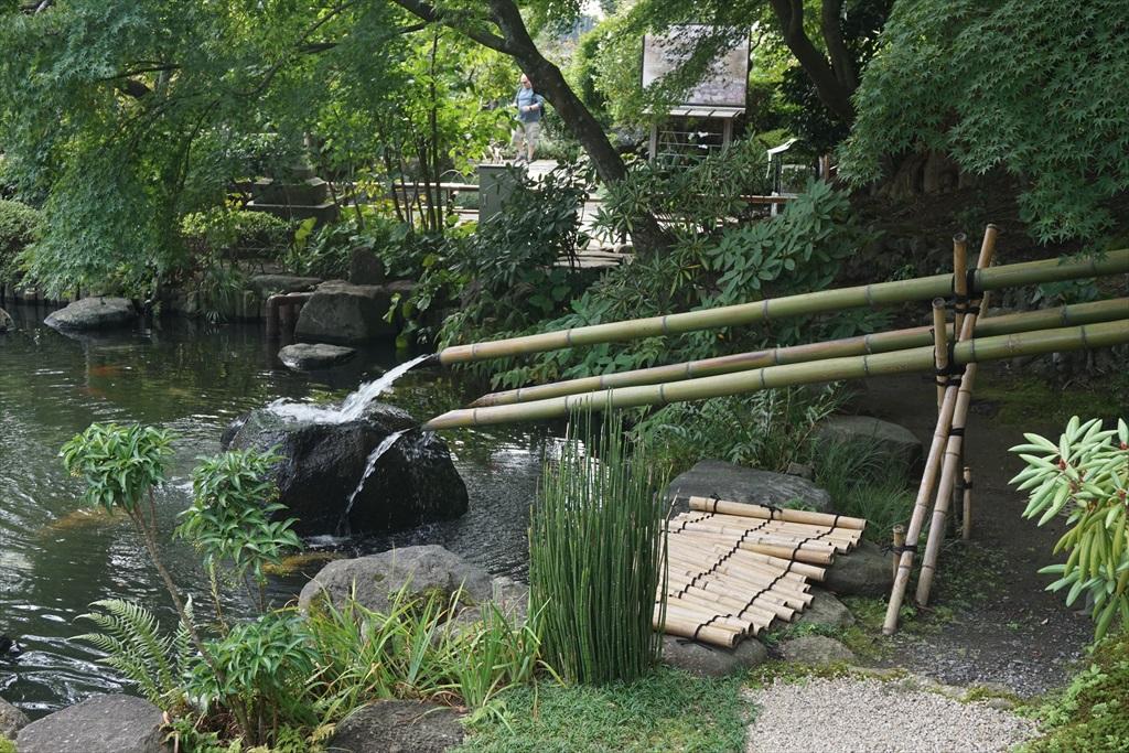 2つの池_6