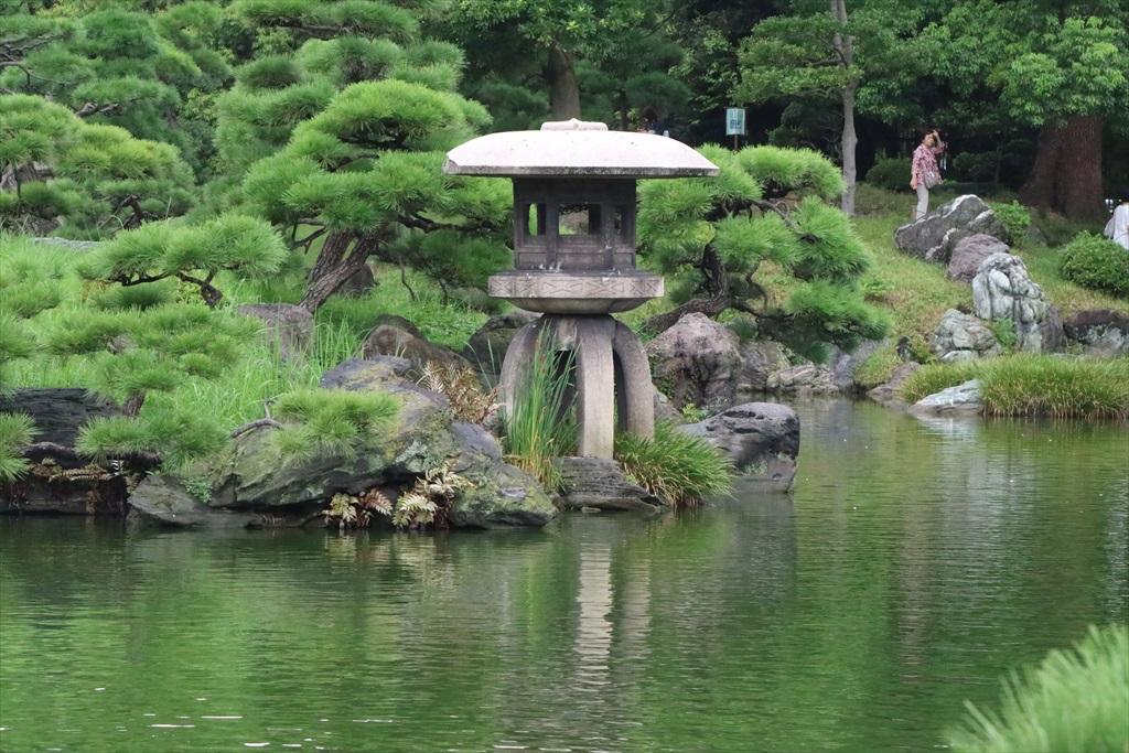 美しい池の景観(1)_1
