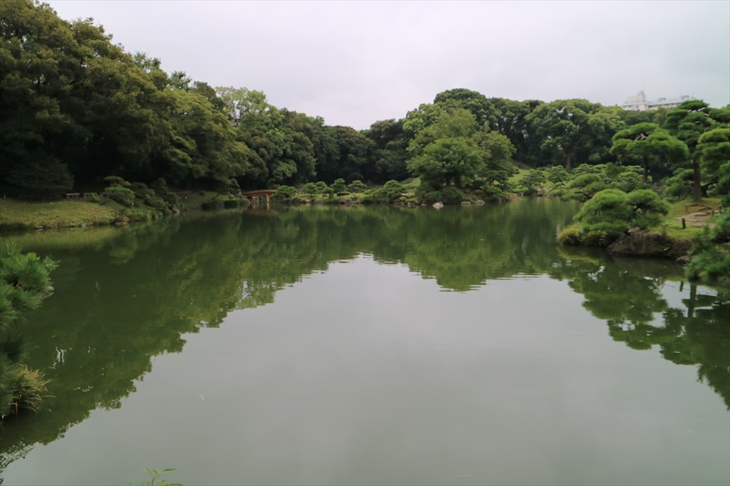 美しい池の景観(1)_7