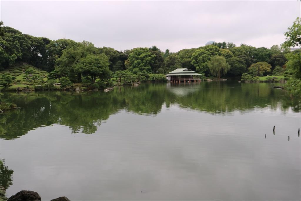 美しい池の景観(1)_10