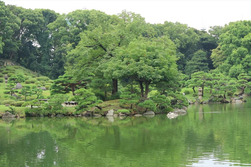 美しい池の景観(1)_12
