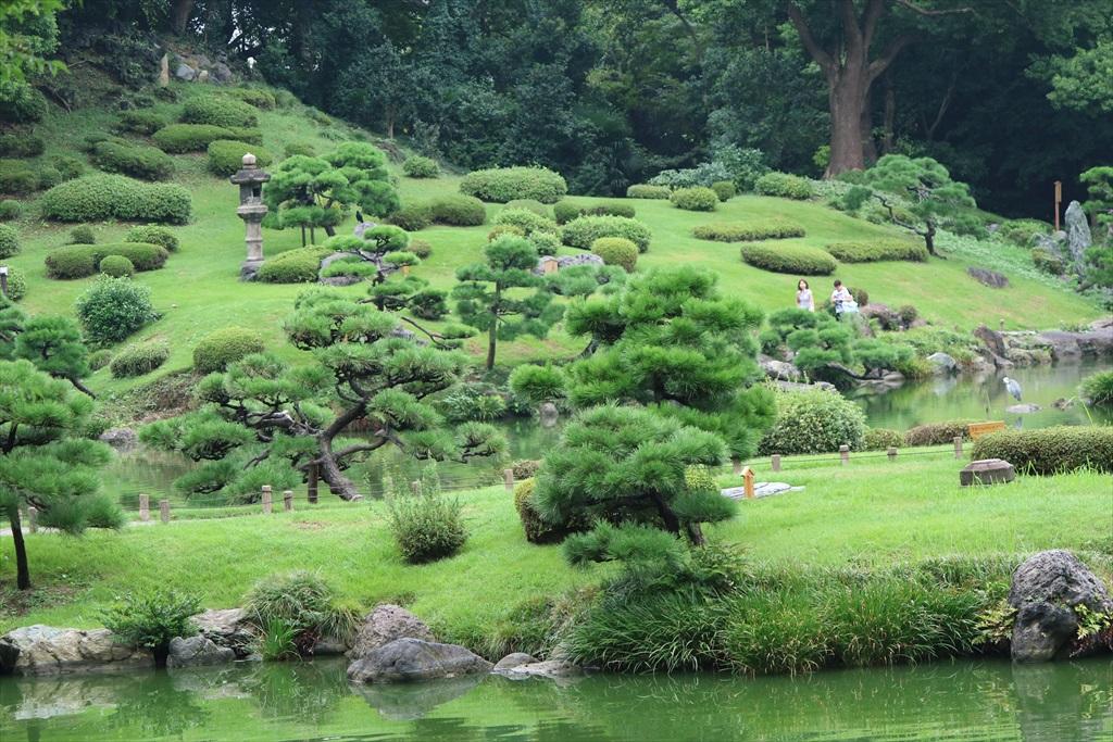 美しい池の景観(2)_5