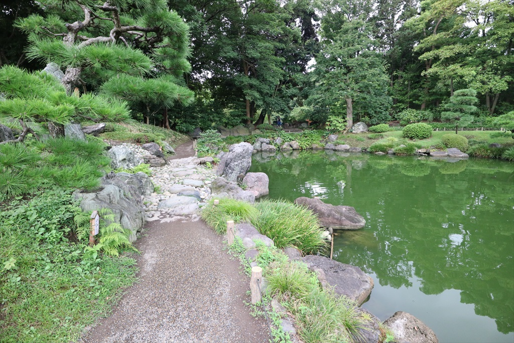 再び池沿いの小道に戻る_13