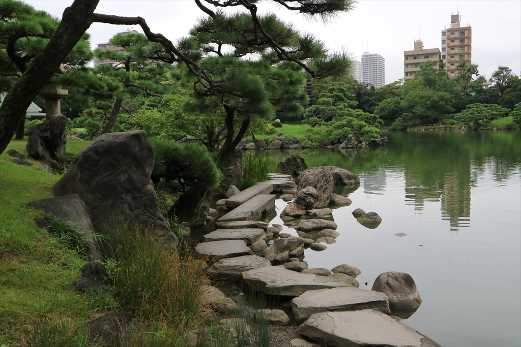 美しい池の景観(4)_3