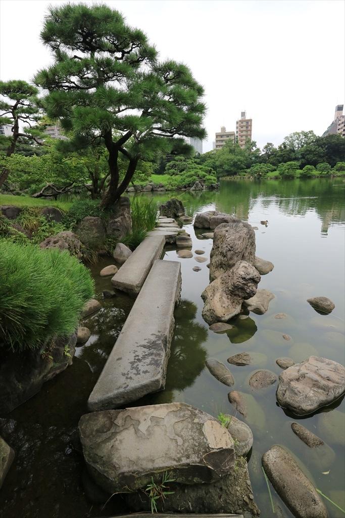 美しい池の景観(4)_4