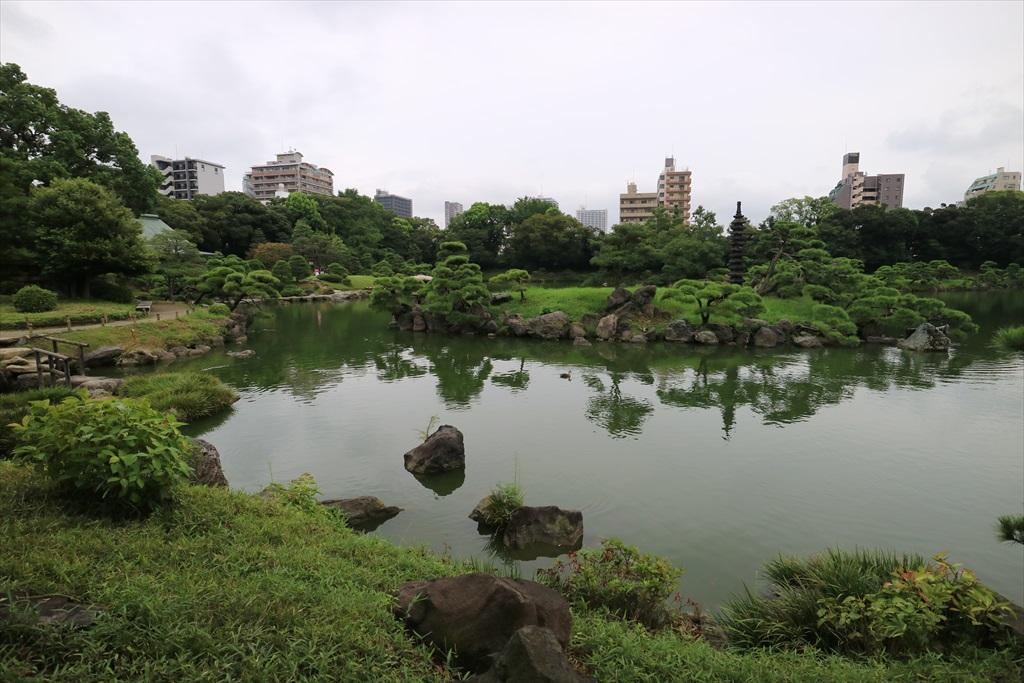美しい池の景観(4)_9