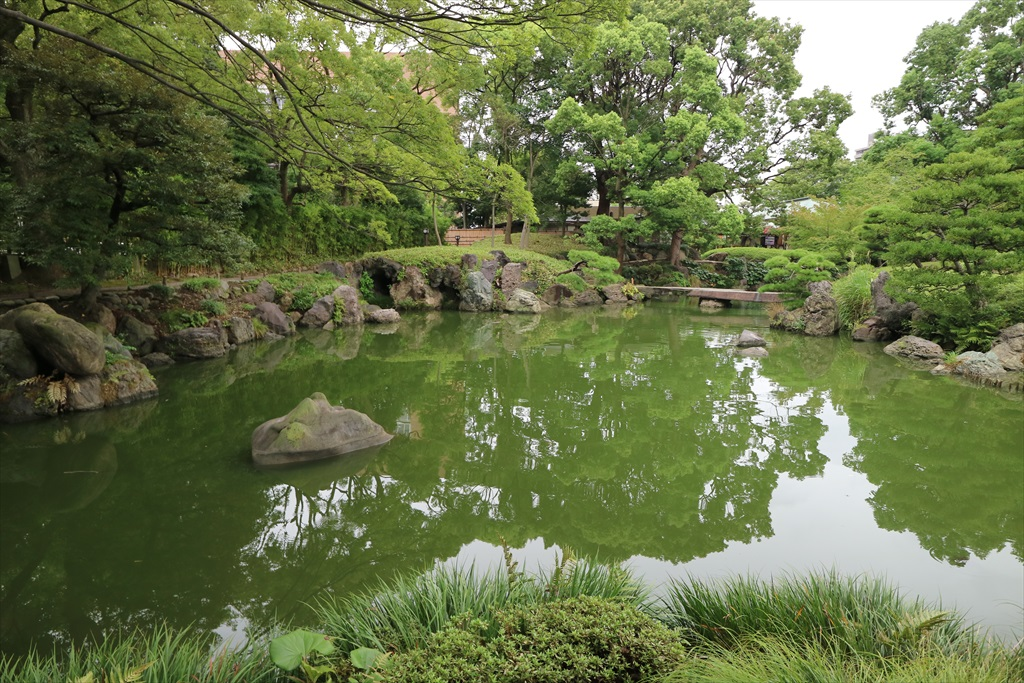 美しい池の景観(4)_12