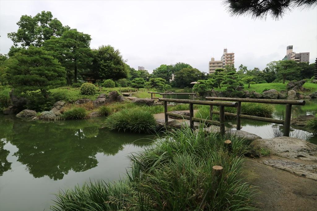 美しい池の景観(4)_13