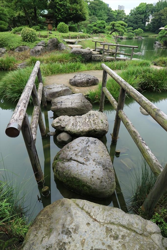 美しい池の景観(4)_15