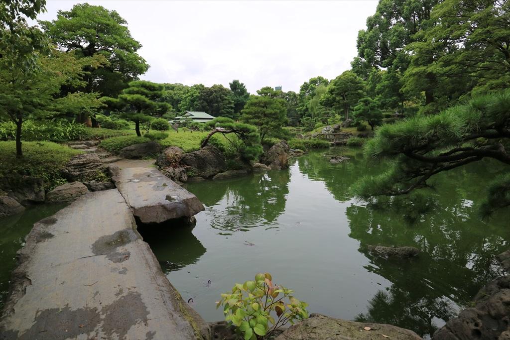美しい池の景観(4)_22