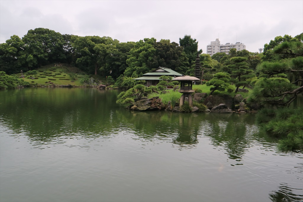 美しい池の景観(4)_28