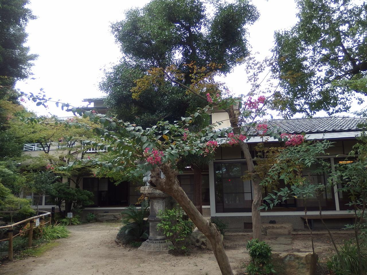 s-P9190035.jpg