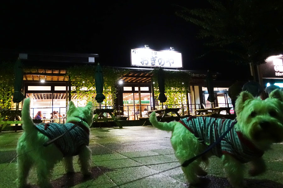 kotosimoowarihayokokawamiyosi3.jpg