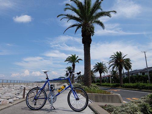 『子ばなれパパの自転車日記』 2歳になりました!