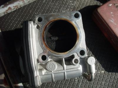 DSCF6024.jpg