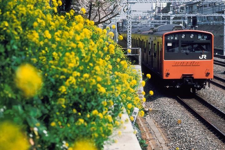 s62東中野_中央線快速201系_003