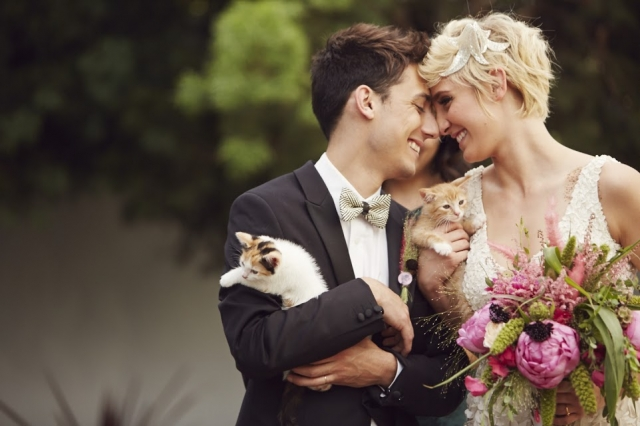 cat-themed-wedding-1_20150826122645509.jpg