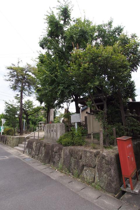 20150812_iwakura_castle-01.jpg