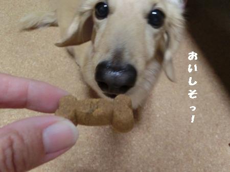 002_convert_20151001212900.jpg