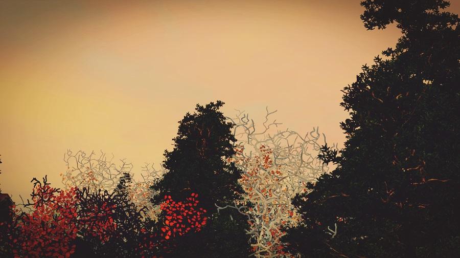 Screenshot-fc-AS259b.jpg