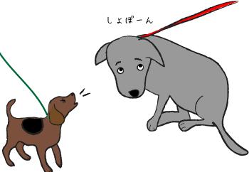 しょぼんとする犬