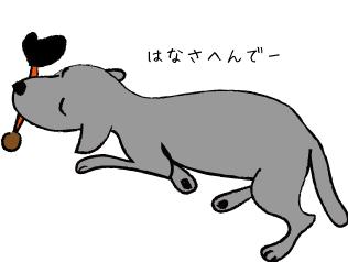 オモチャをくわえる犬