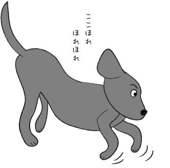ココホレする犬