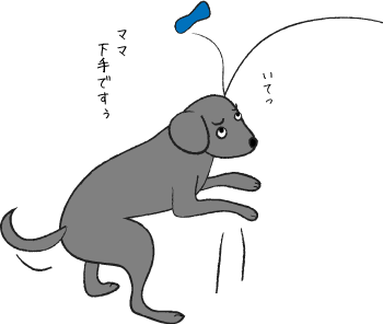 ボールを取れない犬