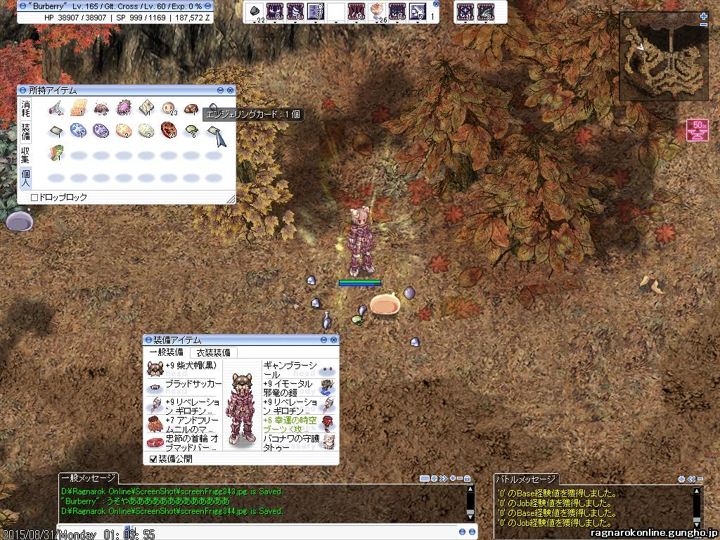 screenFrigg345.jpg