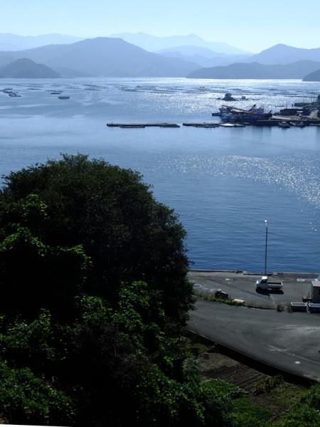 朝の宇和海