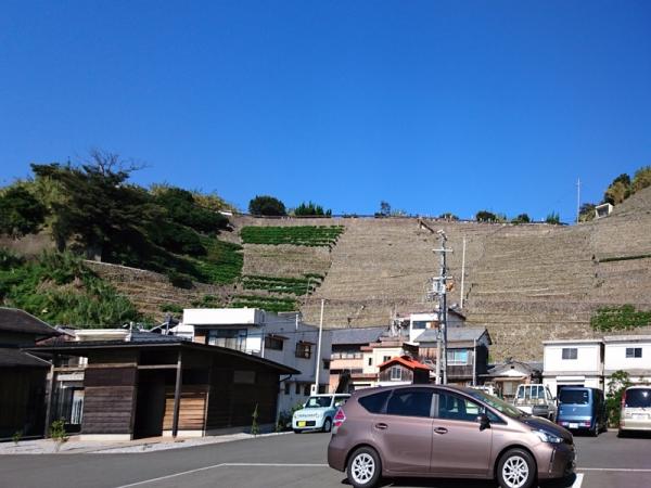 遊子水荷浦の段畑02