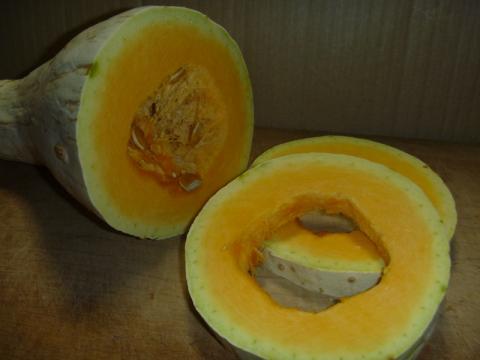 ロングかぼちゃ縮小