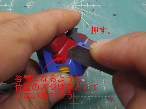 IMGP3362.jpg