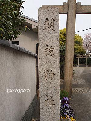 14asakura00.jpg