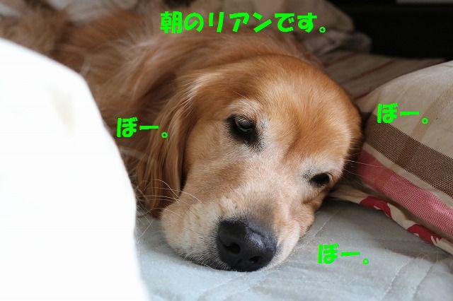 IMG_2510.jpg