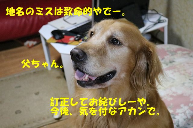 IMG_2648.jpg