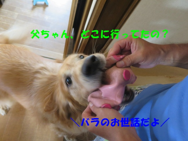 IMG_6698.jpg