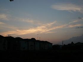 P1110477.jpg