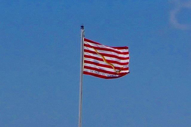 ガラガラへびの旗