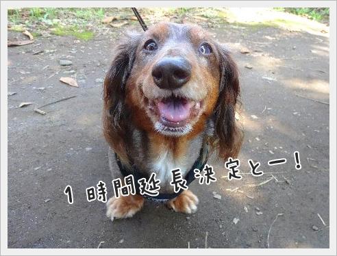 fc2_2015-9-15_05.jpg