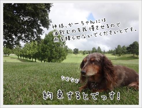 fc2_2015-9-24_08.jpg