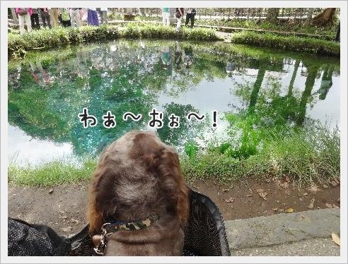 fc2_2015-9-7_09.jpg