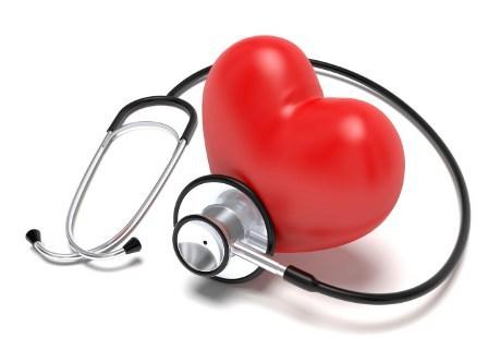 jantung2ts.jpg