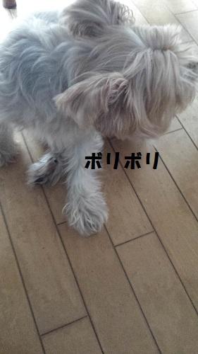 20151011_153238.jpg