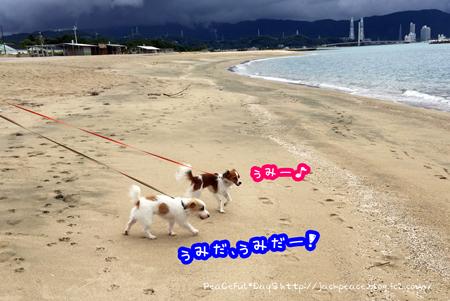 150909_umi1.jpg