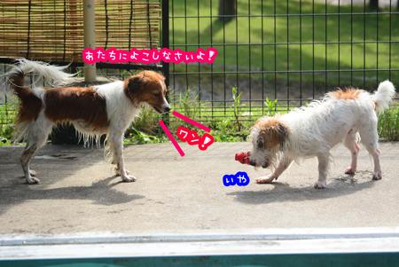 150929_yuasa3.jpg