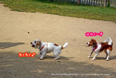 151009_yuasa4.jpg